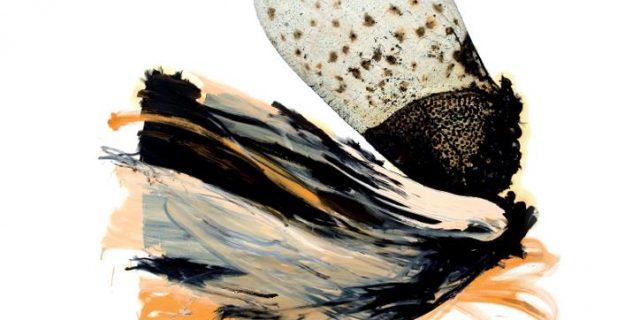 """El pintor segoviano Luis Moro presenta """"Microcosmos"""" en la Gravelmouth Gallery de San Antonio (Texas)"""