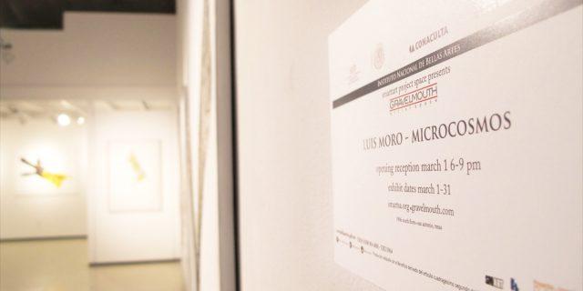"""""""Microcosmos"""" exposición en la galería Gravelmouth"""